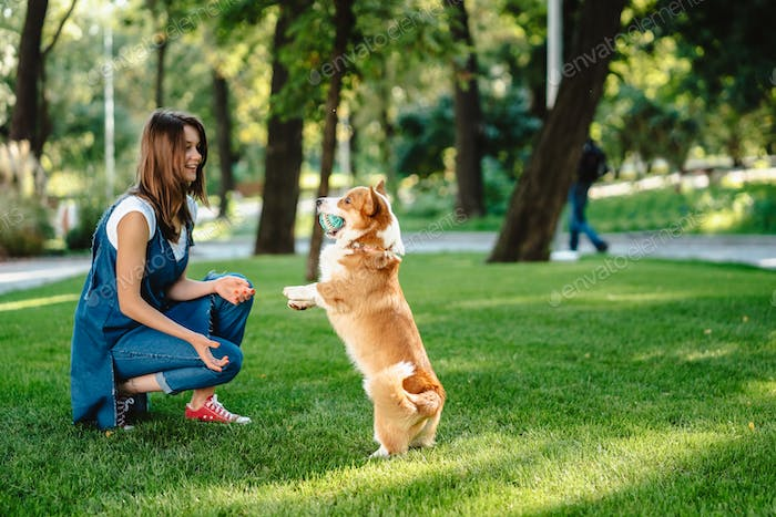 Portrait of woman with dog Welsh Corgi Pembroke in dog park