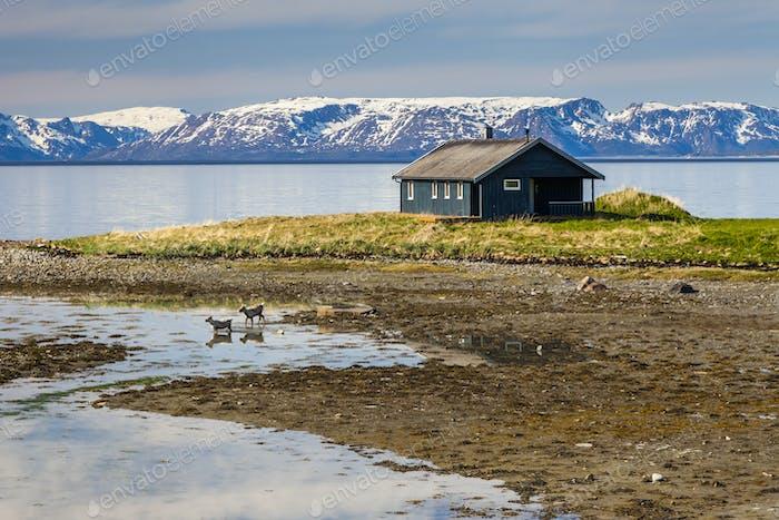 Holzhaus am Ufer des Fjords, Norwegen