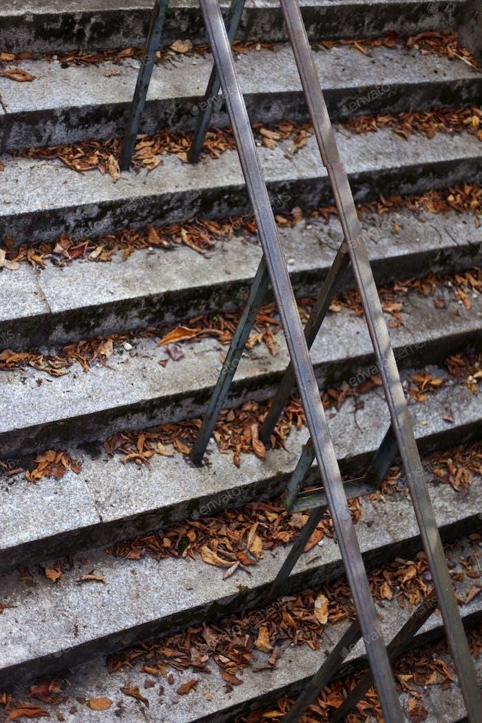 Blätter auf Stufen