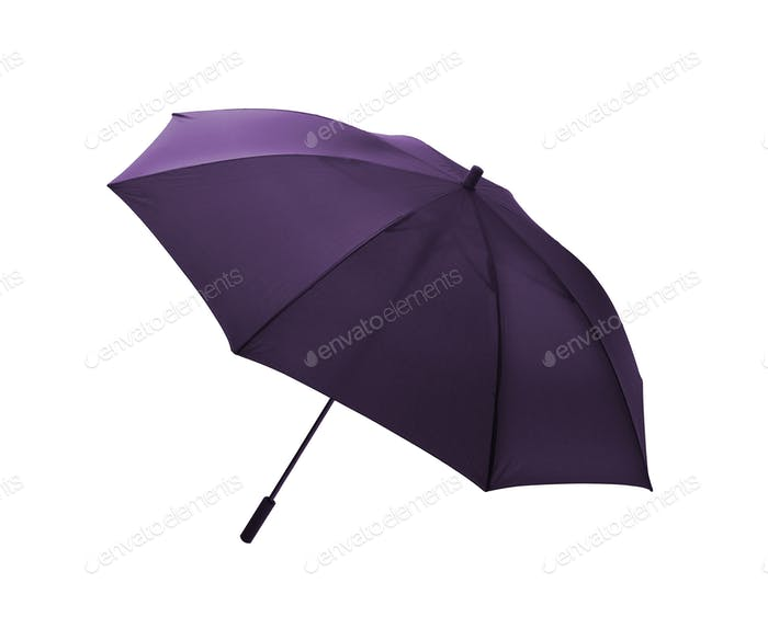 violet umbrella isolated