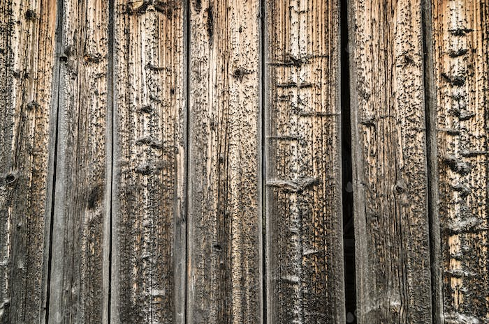 Aged spruce pine wood plank wall detail