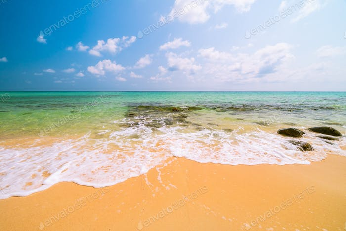 Beautiful paradise tropical beach and sea