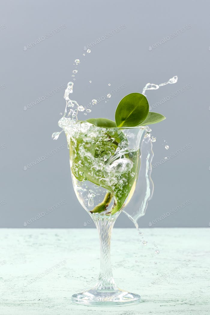 Green leaves in a glass with a splash of water on a light gray b