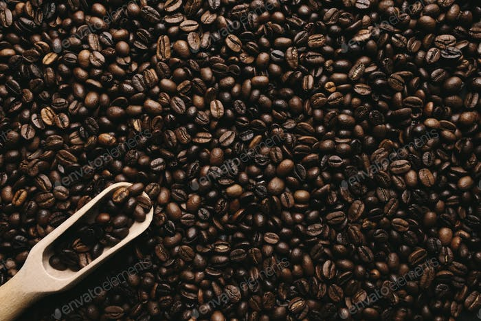 Background with array of dry coffee beans and spoon