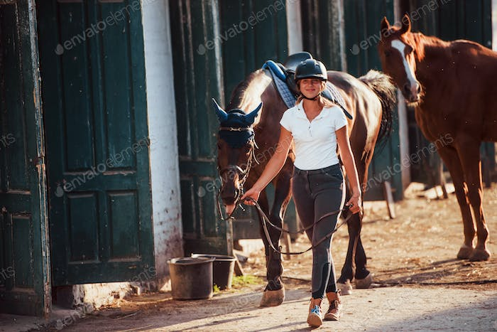 Horsewoman in uniform and black protective helmet with her horse
