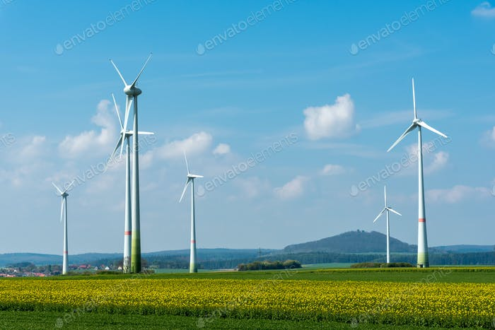 Wind energy plants in a rapeseed field