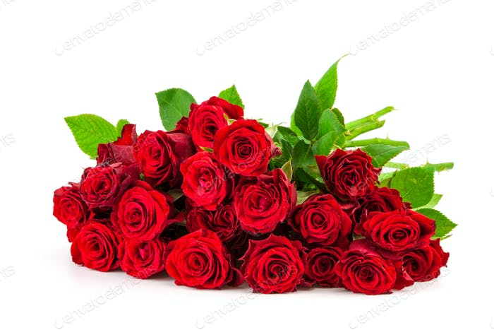 bouquet of red roses on a white background