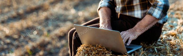 Panoramaaufnahme eines selbständigen Mannes, der auf dem Laptop tippt, während er auf Heuballen sitzt