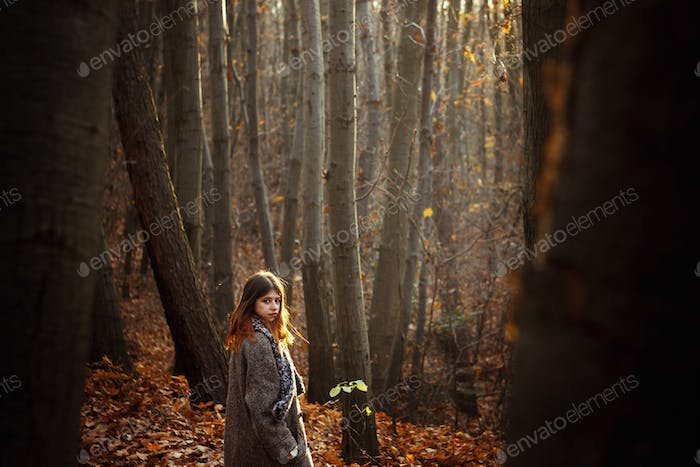 gorgeous stylish beautiful happy brunette girl on a background of sunny autumn forest