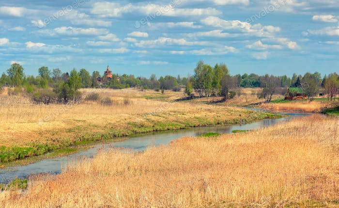 Rural landscape with high dry grass
