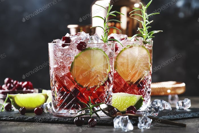 Red alcohol cocktail with cranberries