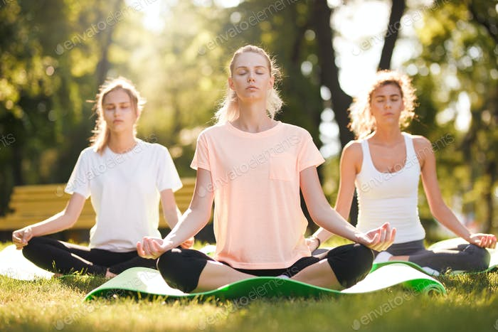 Group of young women practicing yoga, morning meditation in nature at the park