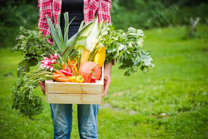 casual hipster woman holding farm fresh garden harvest