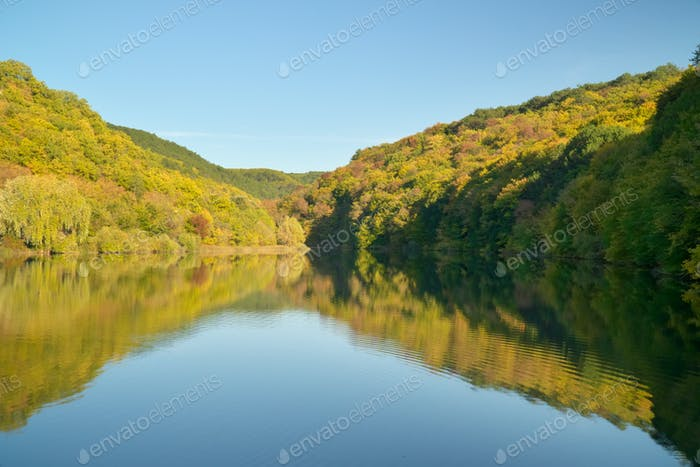 River and autumn forest.