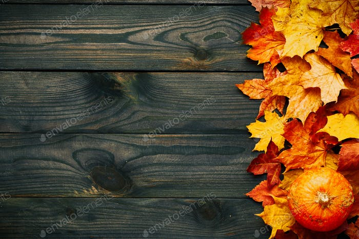 Autumn leaves and pumpkin over old wooden background