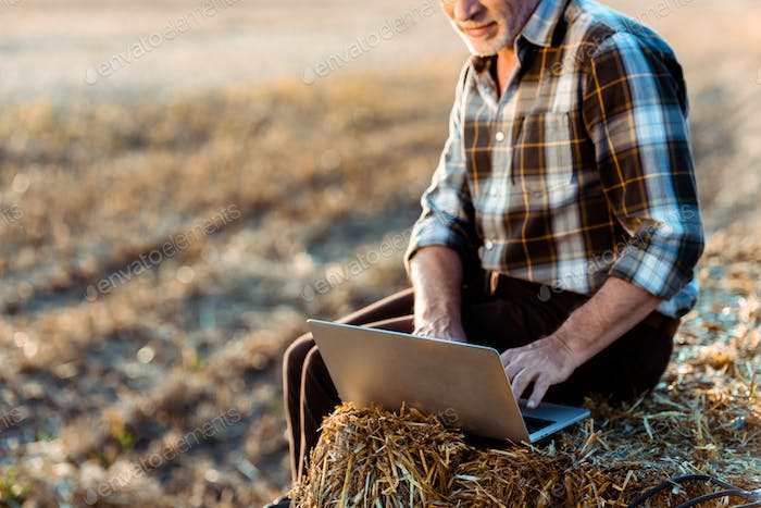cropped view of happy self-employed farmer typing on laptop while sitting on bale of hay