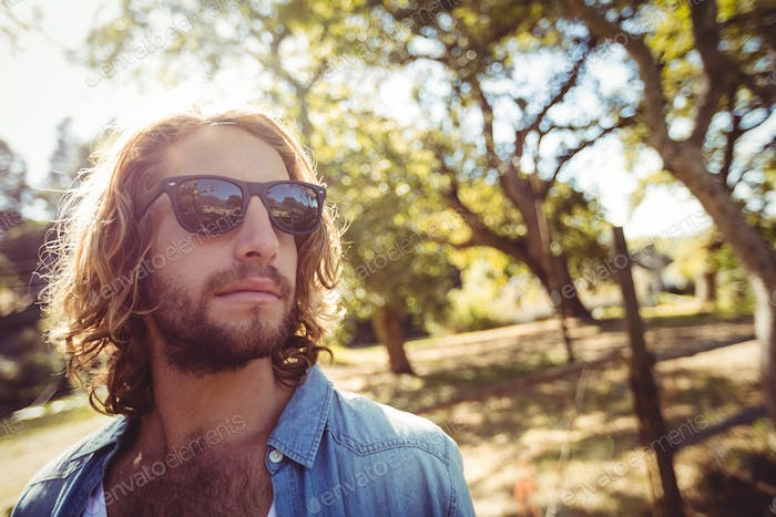 Man in sunglasses standing in park