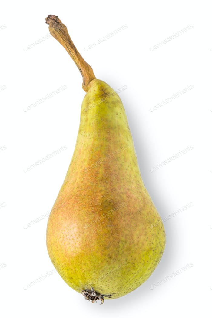 Pear on the white background vertical