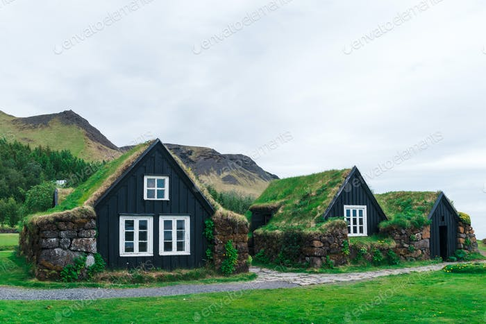 Traditional houses with grass