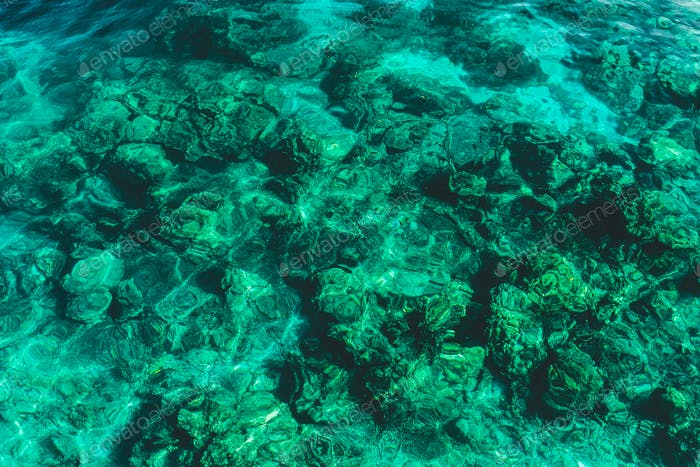 Clear and transparent emerald water surface. Paradise  holidays on islands, snorkelling and diving
