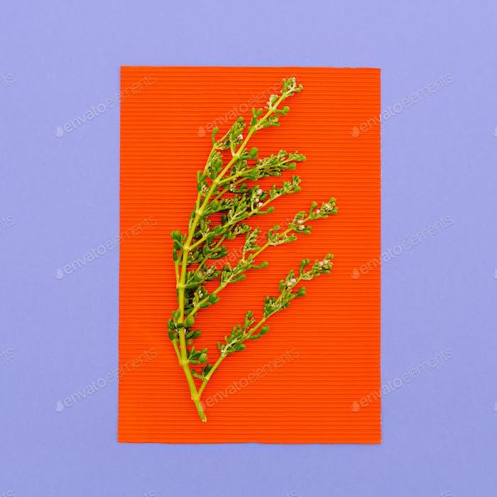 Plant Minimal art design