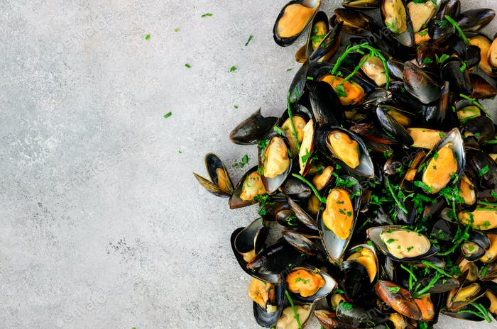 Mussels on stone concrete background. Top view, copy space