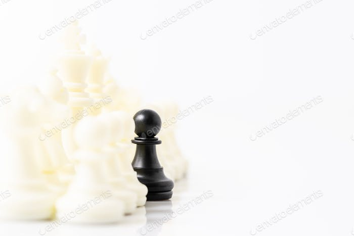 Set of Black and white chess pieces on white background-6