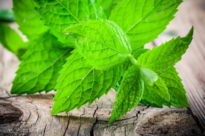 fresh organic mint