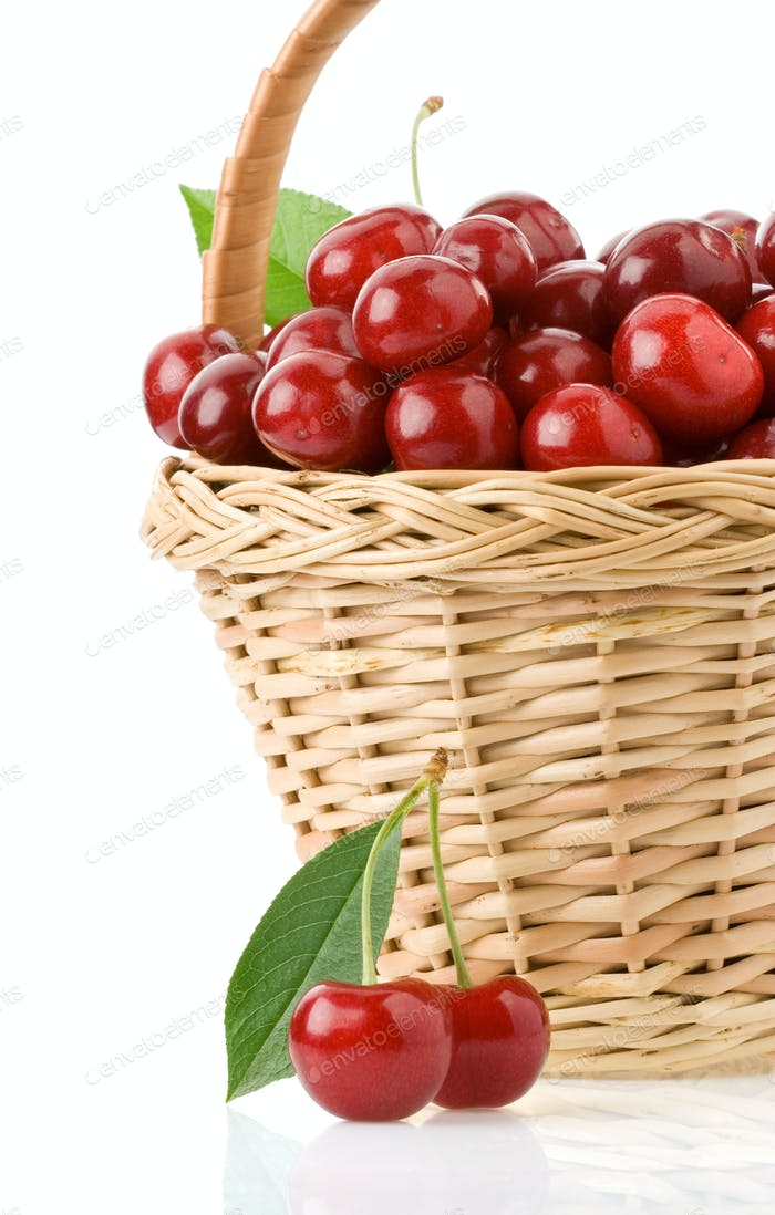 sweet cherry in basket isolated on white
