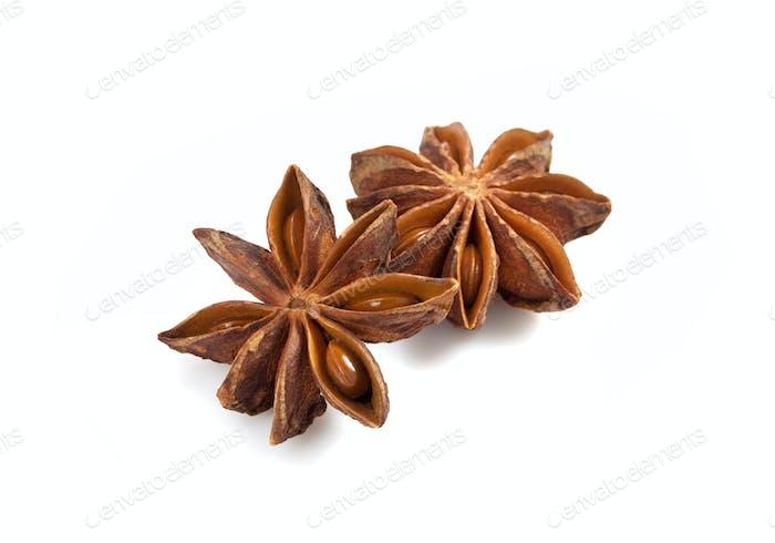 anise star on white background