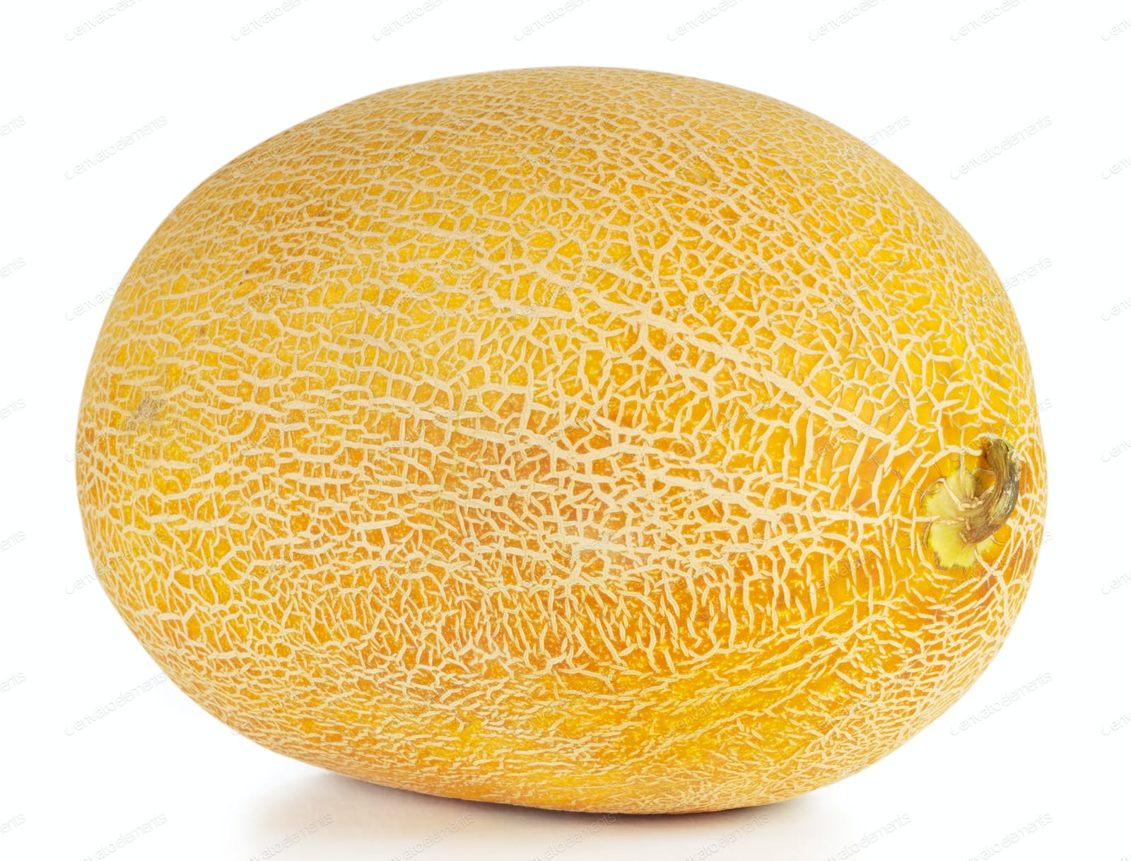 Sweet Ripe Yellow Oval Melon Photo By Alexlukin On Envato Elements Cantaloupe vines are trailing and are slightly hairy with simple oval leaves. sweet ripe yellow oval melon photo by alexlukin on envato elements