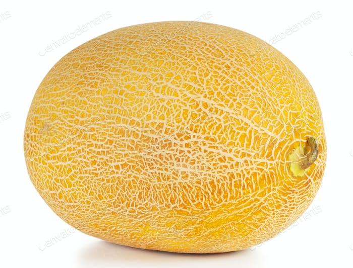 Sweet ripe yellow oval melon