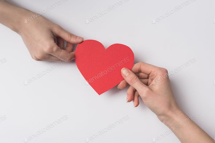Cropped View of Women Holding Red Heart on White Background
