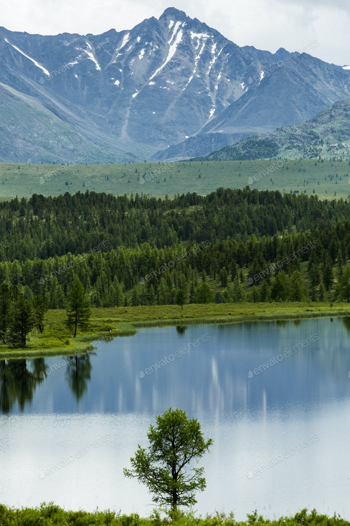 Beautiful Landscape. Mountains, Lake And Forest.