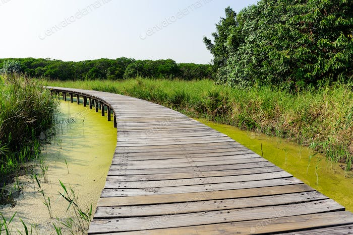 Wooden walkway over the river