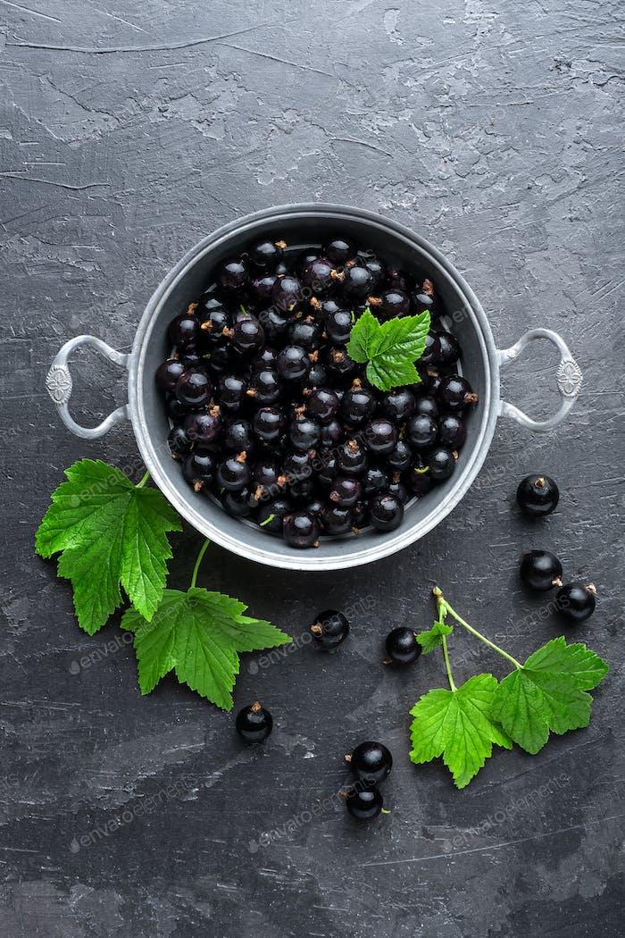 Schwarze Johannisbeere Beeren mit Blättern, schwarze Johannisbeere