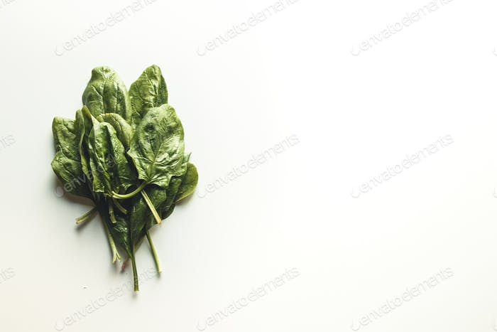 green spinach leaves on white background