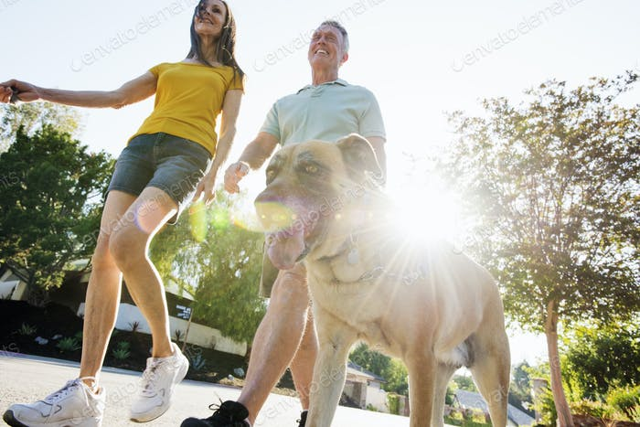 Senior couple wearing shorts walking their dog along a street in the sunshine.