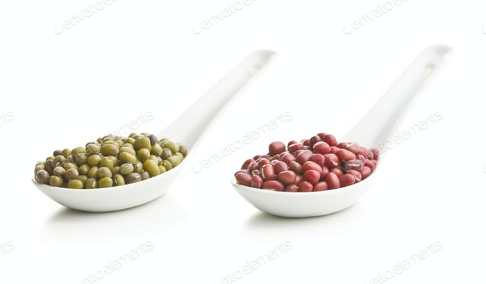 Red adzuki beans and green mungo beans.