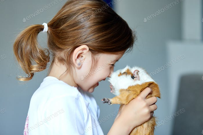 Portrait of happy smiling little girl hugging red guinea pig.