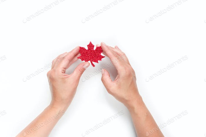 Happy Canada Day. Patriotic Independence Day celebration with flag symbol of red maple during the