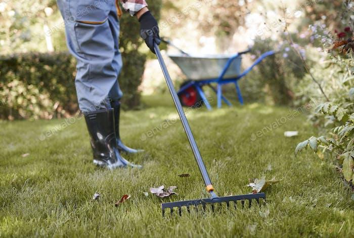 Unrecognizable man raking leaves in the garden
