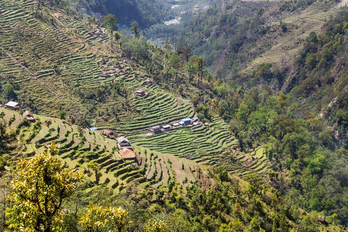 Overview of scenic terrace farming on hill slope in Nepal