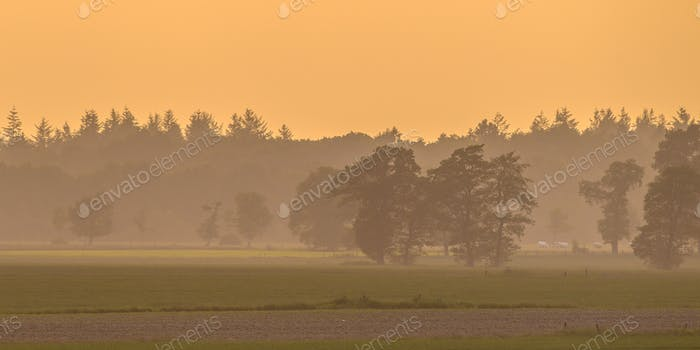 Peaceful agricultural  landscape with trees and meadows