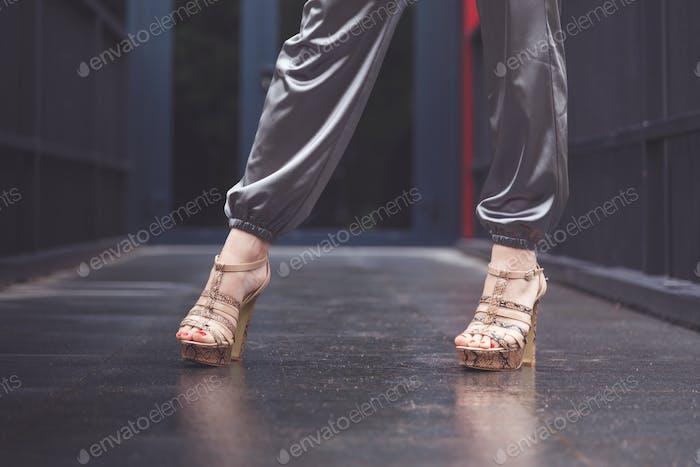 Woman wearing silver elegant pants