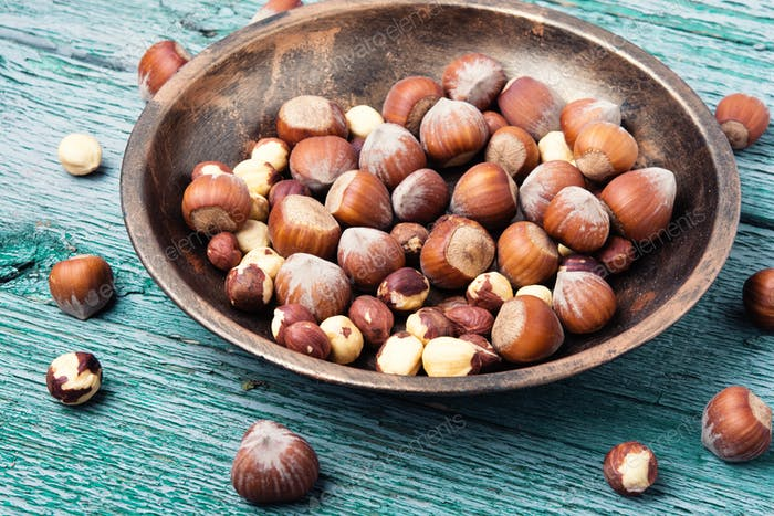 set hazelnut nut