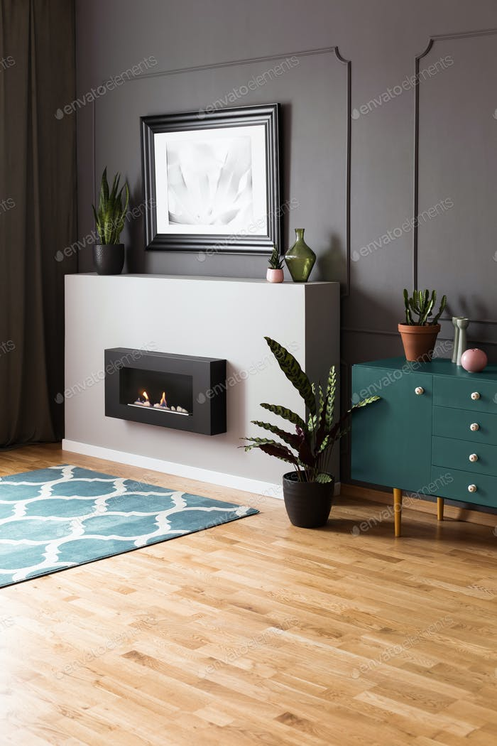 Plant on green cupboard in spacious grey living room interior wi