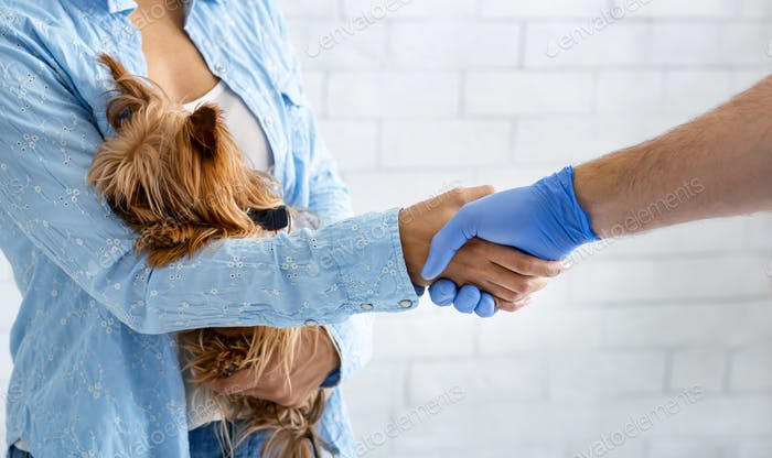 Closeup of veterinarian doc shaking hands with dog owner at animal hospital