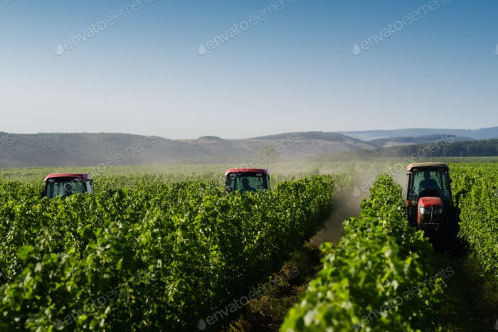 red tractors working in the vineyard