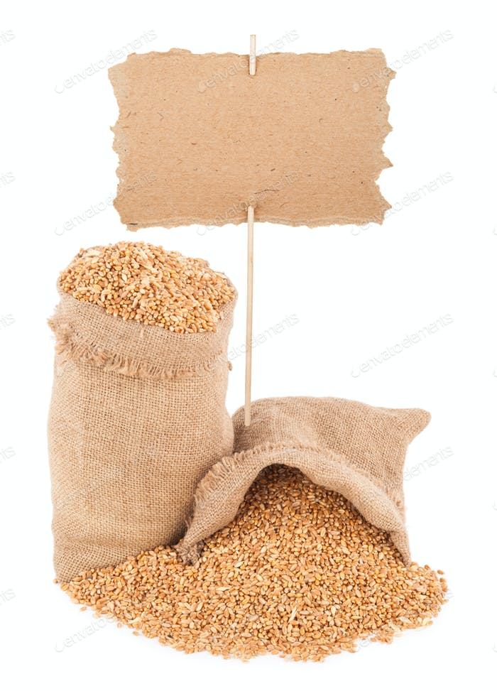 wheat grains with  price tag